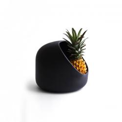 Moustache Ô Fruit Bowl