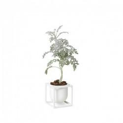 By Lassen Flower Pot